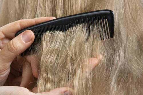 cabelos porosos - resolva já!