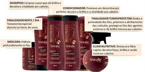 linha de produtos shitake