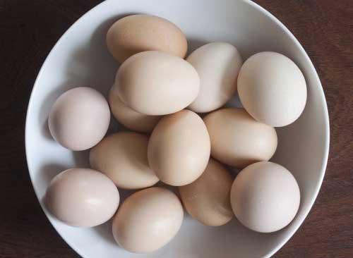 ovo e o alimento mais completo que existe, ajuda ate os cabelos a pararem de cair