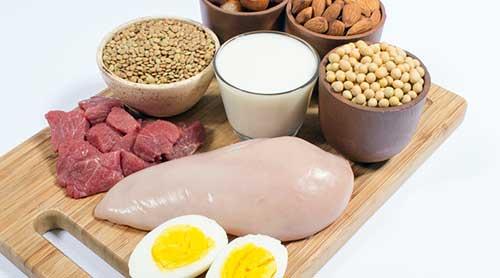 alimentos que contem proteinas
