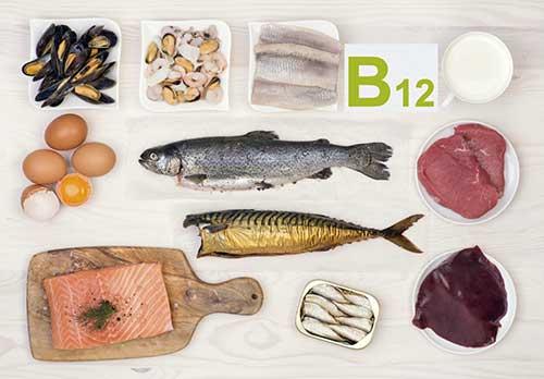 alimentos que tem vitamina b12
