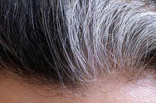 foto de cabelo grisalho aproximada