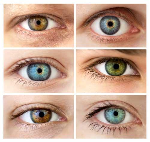 foto com as cores dos olhos