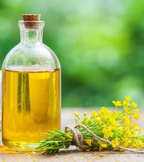 oleo de cabelo pode ser usado no cabelo para crescimento