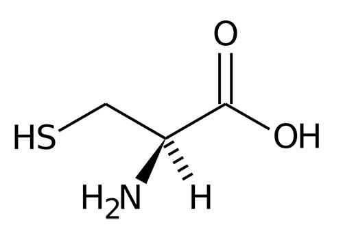 imagem ilustrativa da cisteina